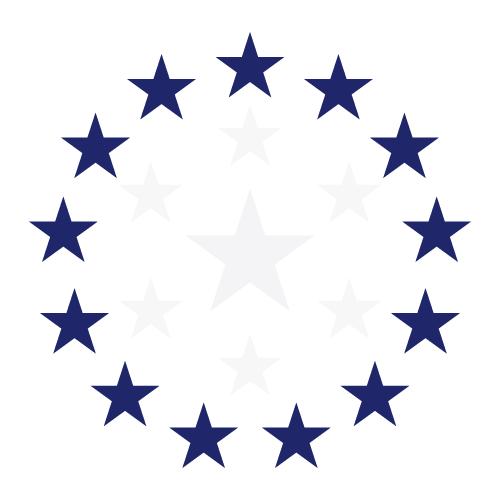 msflag_13