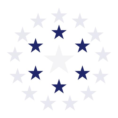 msflag_6