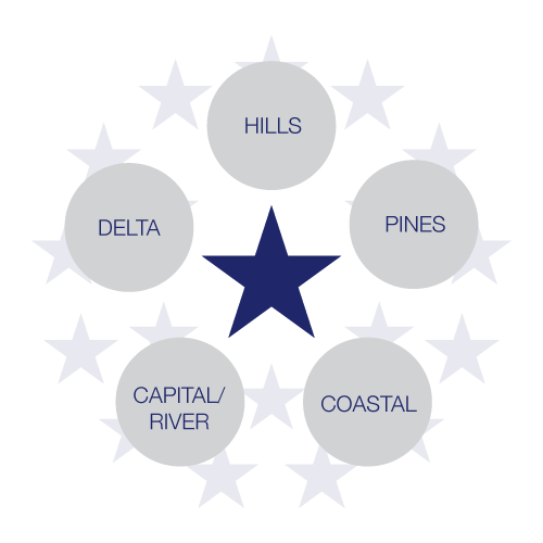 A five pointed start that represents the distinct regions of Mississippi: Hills, Pines, Coastal, Capital/River, and Delta.