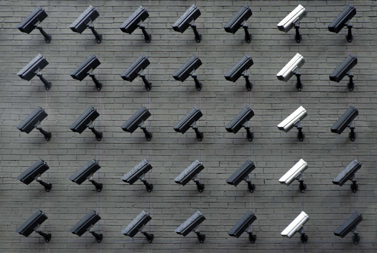 A wall of cameras. Most of the cameras are black with a column of white cameras.
